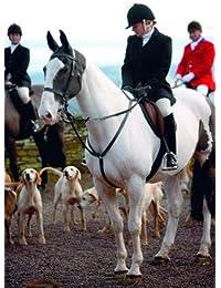 Shires pour Femme Clifton Noir Laine Hunt Manteau pour Femme 5c63235b78db