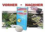 Algenkiller Protect 150g ausreichend für 10 000 Liter Teichwasser inkl. POWERHAUS24 Pflanzkorb