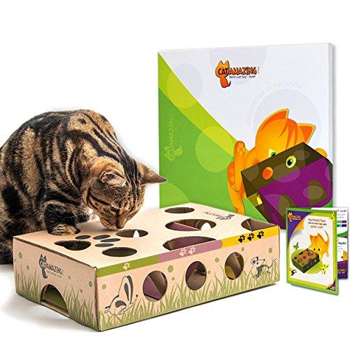Cat increíble-Mejor Interactivo Gato Juguete