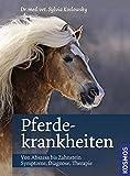 Pferdekrankheiten: Von Abszess bis Zahnstein; Symptome, Diagnose, Therapie