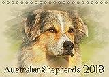 Australian Shepherds 2019 (Tischkalender 2019 DIN A5 quer): Australian Shepherds im kunstvollen Aquarell-Stil. Wer außergewöhnliche Bilder liebt, wird ... (Monatskalender, 14 Seiten ) (CALVENDO Tiere)