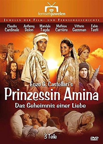 Bild von Prinzessin Amina: Das Geheimnis einer Liebe - Teil 1-3 (Fernsehjuwelen) [2 DVDs]