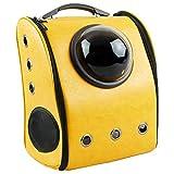 CityBAG - Haustier Transportbox Transportrucksack Raumkapsel Rucksack für Hunde und Katzen Hautimitation Gelb