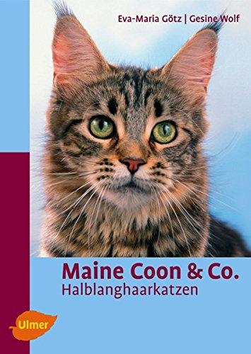 Maine Coon & Co.: Halblanghaarkatzen (Heimtiere)