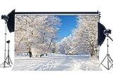 Sunny Star YX907 - Fondo de Nieve de Vinilo para árboles del Bosque Rural de Invierno y el Bosque de Las Maravillas (Fondo de fotografía con Cubierta de Nieve)