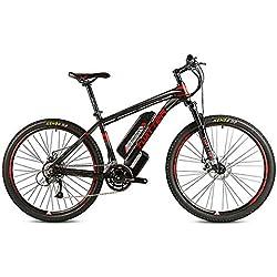 Wheel-hy Simple Bike Vélo électrique - 250W - Adulte - Batterie Amovible (Lithium Cell 36V10Ah)