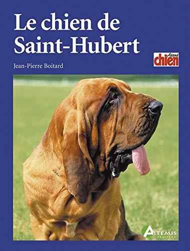 Le chien de St Hubert