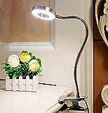 W-LITE LED Schreibtischlampe Klemmfuß 6W Leselampe Klemme Lichtfarben-Abwechselung Augenschutz für Bett, Buch, Nachttisch, Büro (Kein Adapter, Silber)