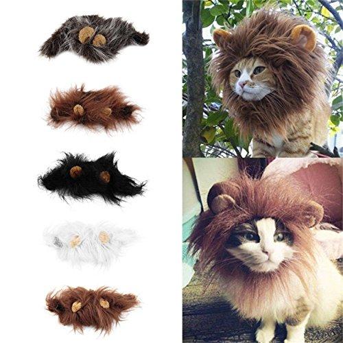 Jasnyfall Pet Kostüm Lion Mähne Perücke für Katze Halloween Christmas Party Dress Up mit Ohr (Farbe: Weiß) (Größe: ()