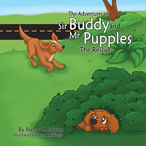 The Adventures of Sir Buddy and Mr.