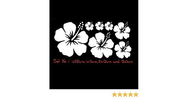 Auto Aufkleber Hibiskus Blumen Set 01 Pkw Kfz Weiß Amazonde Auto
