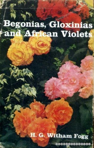 begonias-gloxinias-and-african-violets