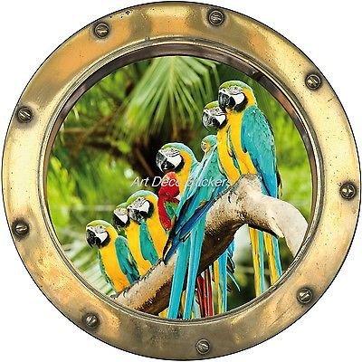 stickersnews-sticker-trompe-l-oeil-deco-perroquets-refhublot-h346-dimensions-30x30cm