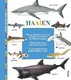 Haaien: Wil jij alles weten over haaien? Sla dan gauw dit boek open... (Kijk om je heen!)