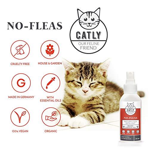 Zoom IMG-3 spray antipulci gatti by catly