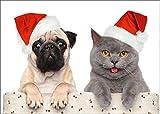 'Divertente biglietti di Natale di set (10PZ) Carlino e gatto feste Natale–Ideale biglietti di auguri per Natale: per animali Amici o famiglie con bambini