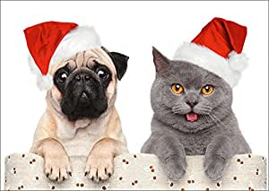 lustige weihnachtskarte mops und katze feiern weihnachten. Black Bedroom Furniture Sets. Home Design Ideas