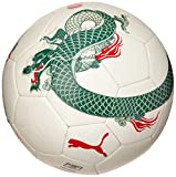 PUMA Ball evoSPEED 5.3 - Balón de fútbol sala, color blanco, talla 4