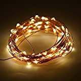 100 LED 33ft/10M Fairy String Light Copper Wire Waterproof Star Starry String Lights, Battery Operated for Bedroom Indoor Outdoor Patio Home Garden Wedding Christmas Party