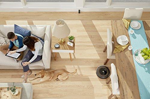 iRobot Roomba 895 Vacuum Cleaner