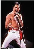 "Póster del grupo ""Queen"" (Freddy Mercury) (59,5cm x 84cm)"