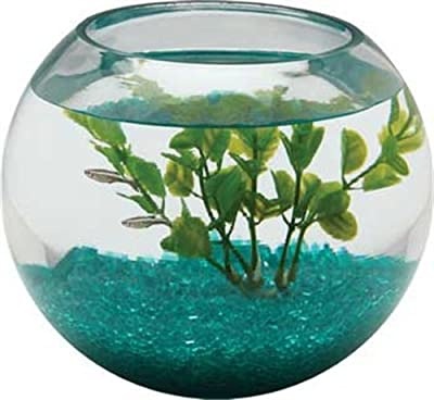 Aquarius BL2.25GLS 1/2-Gallon Glass Bowl