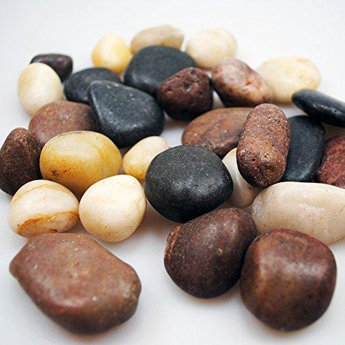 1,5 kg Flusskiesel Dekosteine weiß grau braun Granit Kieselsteine als Streudeko oder Zierkiesel. Steine zum bemalen und beschriften als Tischdeko Hochzeit flache Steine abgepackt in 3 x 500g Beutel