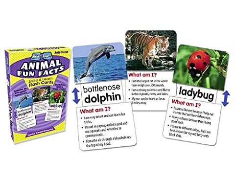 Teacher Created Resources 6563 Animal Fun Facts Slide and Learn Flash Cards