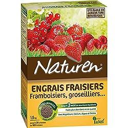 Naturen 8388 Engrais Fraisiers et Arbustes A Petits Fruits 1,5 kg
