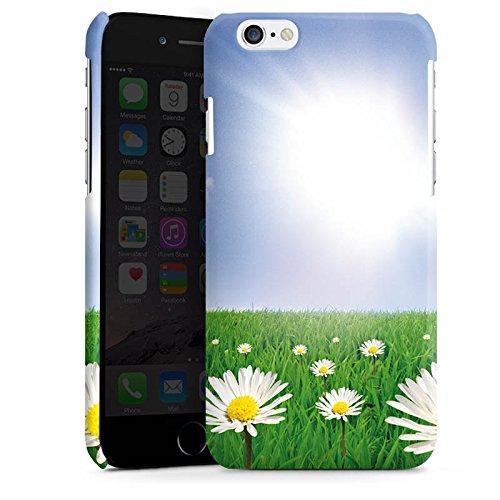 Apple iPhone 4 Housse Étui Silicone Coque Protection Pâquerette Prairie de fleurs Soleil Cas Premium brillant