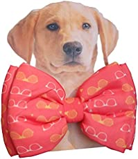 Dog Bow Tie by Lana, Quirky & Cool Dog Fashion Accessory with Easy to use Adjustable Strap - Funky Frames