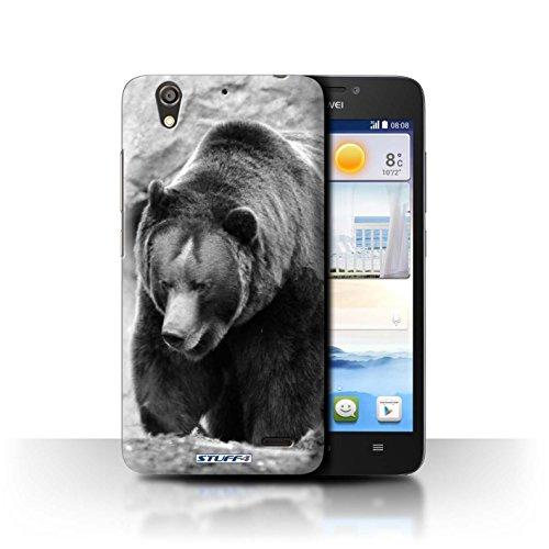 Stuff4® Hülle/Hülle für Huawei Ascend G630 / Bär Muster/Zoo-Tiere Kollektion