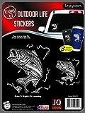 Enjoyit Autosticker Auto Sticker Fischer Barsch 3 Stück Autokleber Outdoor Life Sticker für Autos, Labtop, Becher