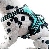 XDYFF Hundegeschirr Pet Gurt Weste reflektierender Verstellbarer Hundebrustgurt Praktische Hundeweste mit D-Ring-Schnalle,Green,M