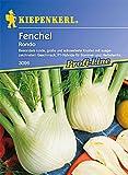 Sperli Gemüsesamen Fenchel Rondo, F1, grün