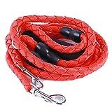 Jixing Doppel Hunde Haustier Leine 2 Way Leine Koppler Pet Trainer Sicherheit Seil für Walking Training (L-1,5 cm * 146 cm), Reines rot, Nylon