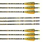 Flèches et Arcs Carbone Mixte 31 pouces Archery sharly, Tir à l'Arc, Sports et loisirs, Plumes naturelles, Flèches pour la chasse et la pratique extérieure, Couleur camouflage, 6 pcs