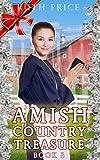 An Amish Country Treasure 3; A Sweet Amish Romance Book (Amish Country Treasure Series (An Amish of Lancaster County Saga))