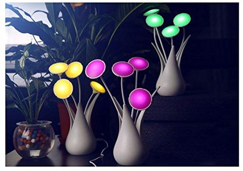 illuminazione-notturna-night-light-regali-creativi-lampada-home-vasi-mini-luce-il-decor-e-atmosfera-