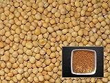 Senape Bianca Rumba–500grammi–Sinapis Alba L.–White Mustard–(fertilizzante Verde–Green Manure)–sem02