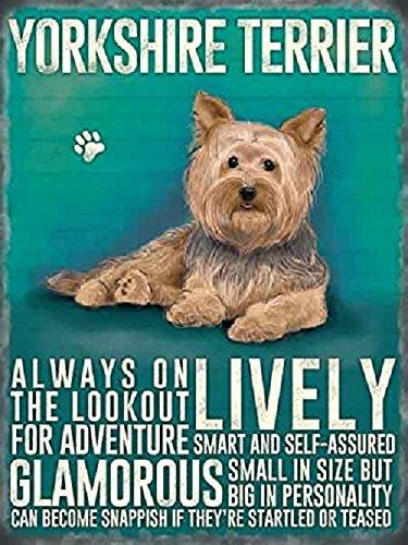 Yorkshire terrier Yorkie Dog 15x 20cm metal Sign Plaque-vivace (Yorkshire Terrier Coaster)
