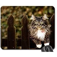 Nizza gatto mouse pad, Mousepad (Gatti Mouse Pad) #013 - Nizza Mouse Pad