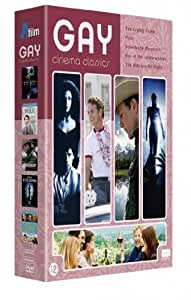 Gay Cinema Classics (5 Films) - 3-DVD Box Set ( The Crying Game / Milk / Brokeback Mountain / Kiss of the Spider Woman / The Kids Are Alrigh [ Origine Néerlandais, Sans Langue Francaise ]