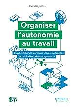 Organiser l'autonomie au travail - Travail collaboratif, entreprise libérée, mode agile... L'activité à l'ère de l'auto-organisation de Pascal Ughetto