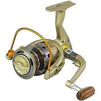 Lixada 12BB Carretes de Pesca Izquierda/Derecha Intercambiables Mango Plegable Pesca Carrete Spinning (JX2000)