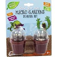 Cultivez votre propre carnivore plantes Vénus mouche Piège & CACTUS enfant Micro jardins SET