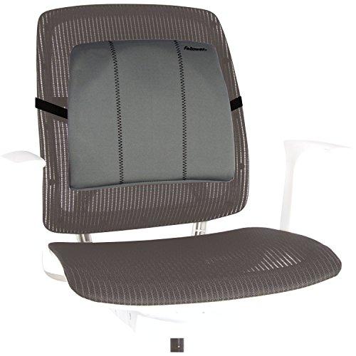 Fellowes 9190901 Smart Suites Slimline Rückenstütze, graphit