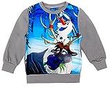 Disney Frozen Die Eiskönigin Kinder Sweatshirt, original Lizenzware, grau, Gr. 116