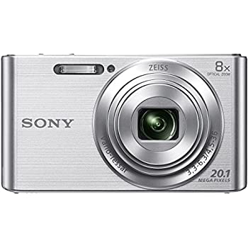 Sony Cybershot DSC-W830/S 20.1MP Digital Camera (Silver) with 8X Optical Zoom and Camera Case