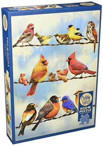 Cobblehill 85034 - Puzzle (500 Piezas), diseño de pájaros